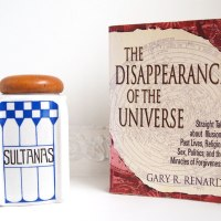 The Disappearance Of The Universe: Gary R. Renard